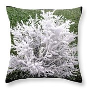 Hoarfrost 20 Throw Pillow