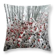 Hoarfrost 25 Throw Pillow