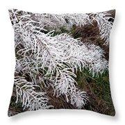 Hoarfrost 26 Throw Pillow