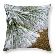 Hoarfrost 4 Throw Pillow