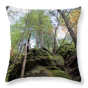 Hocking Hills Moss Covered Cliff Throw Pillow