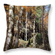 Hocking Hills Trees Throw Pillow