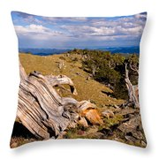 Hoe-down At The Top Of The World Throw Pillow