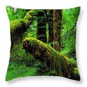 Hoh Rainforest Throw Pillow