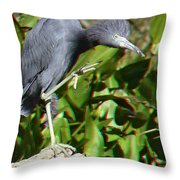 Hold-off 3d Glasses Throw Pillow
