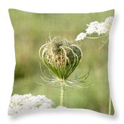 Holding On To Everything Throw Pillow