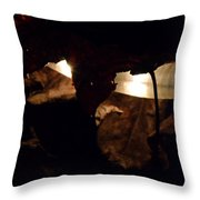 Holding On To The Light Throw Pillow