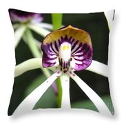 Holding Your Heart Throw Pillow