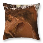 Hole-in-one Rock Throw Pillow