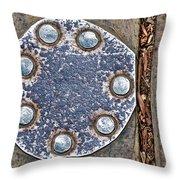 Hole Patch 2 John Muir Woods Throw Pillow