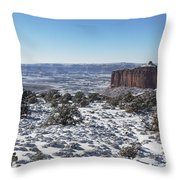 Holeman Spring Basin Throw Pillow