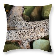Holey Driftwood Throw Pillow