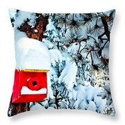 Holiday Birdhouse Throw Pillow