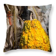 Holiday Gourd Throw Pillow