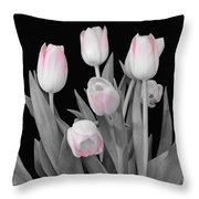 Holland Tulips In Black And White With Pink Throw Pillow