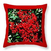 Holly Berries # 2 Throw Pillow