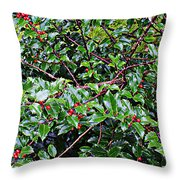 Holly Bush - Throw Pillow