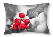 Holly Throw Pillow