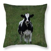 Holstein Hello Throw Pillow