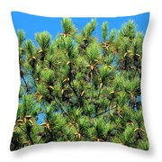 Holy See Throw Pillow