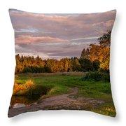 Holy Source 3. Karelia Throw Pillow