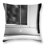 Home In Detail Throw Pillow