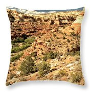 Home Of Calf Creek Falls Throw Pillow