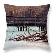 Home Of The Black-crowned Night Heron Throw Pillow