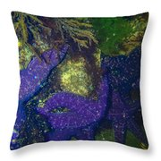 Home Of The Stars Throw Pillow