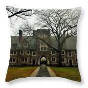 Home Of The Tigers Throw Pillow