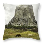 Home On The Range At Devils Tower Throw Pillow