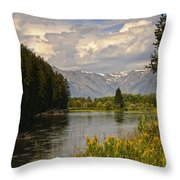 Homeground Waters Landscape Throw Pillow