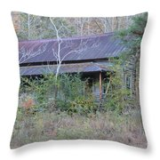 Homes With History Throw Pillow