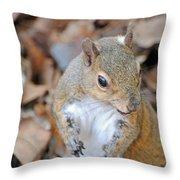 Homosassa Springs Squirrel 2 Throw Pillow