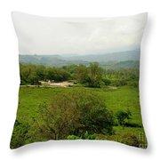 Honduran Homestead Throw Pillow