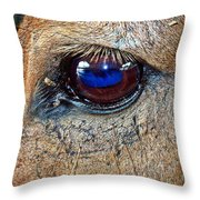 Honest Eye Throw Pillow