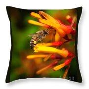 Honey Bee 4 Throw Pillow