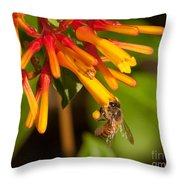 Honey Bee 7 Throw Pillow