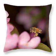 Honey Bee And Crabapple Throw Pillow
