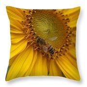 Honey Bee Close Up On Edge Of Sunfower...  # Throw Pillow