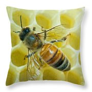 Honey Bee In Hive Throw Pillow
