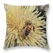 Honey Bee Meets Dandy Lion Throw Pillow