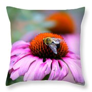 Honey Bee On A Pink Daisy Throw Pillow
