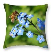 Honey Bee On Forget-me-not Flowers Throw Pillow