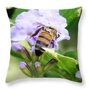 Honey Bee On Lavender Flower Throw Pillow