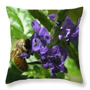 Honey Bee On Purple Flower Throw Pillow