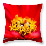 Honey Dew Breakfast Throw Pillow by Alexander Senin