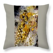 Honey Fungus Throw Pillow