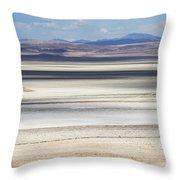 Honey Lake California Throw Pillow