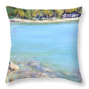 Honey Moon Beach Throw Pillow